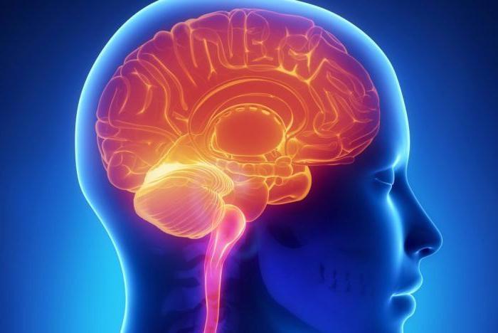 Сосудистая мальформация: причины, симптомы, диагностика и методы ...