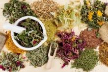 Противоопухолевые травы при различных заболевания: обзор, особенности применения, эффективность и отзывы