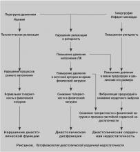 Гипертрофия левого желудочка - симптомы и факторы, провоцирующие патологию, лечение