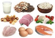 Сколько белка усваивается за один прием пищи? Белок и углеводы в продуктах питания