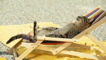 Когда и как солнечные ванны лучше всего принимать?