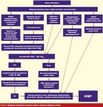 Синдром портальной гипертензии - общая информация
