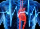 Кардионевроз - симптомы и лечение дисгармоничной регуляции работы сердца