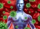 Головним, бактеріальних, інфекцій, імунна, вірусних, людини, засобом, захисту, організму, система, неправильного, виконує, своїх, функцій, часто, людей, способу, життя, сучасних, Головним, піклується
