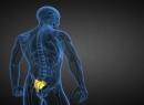 Перелом крестца: диагностика, лечение, последствия. Как долго заживает перелом крестца