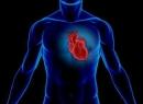 Сердечный горб: причины, диагностика, лечение