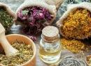 Травы для печени и поджелудочной железы: рецепты приготовления и инструкция по применению