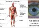 Гепатит С - симптомы, лечение, группы риска и особенности заболевания