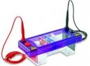 Лекарственный электрофорез: показания и противопоказания, методики, алгоритм проведения, механизм действия, преимущества