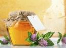 Клеверный мед: полезные свойства и состав продукта
