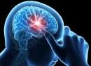 центральной, многих, работу, внутренних, органов, недавно, Относительно, контролирует, система, системы, нервной, организме, человека, нервная, вегетативная, ученые, вывели, контролировать, могут, вегетативной
