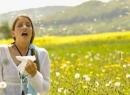 Аллергия в августе: причины и лечение