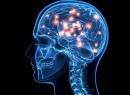 Менингоэнцефалит (менингит энцефалитный): причины, симптомы, диагностика и лечение
