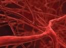 Как влияет на организм алкоголь, расширяет сосуды или сужает?