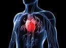 Как укрепить сердце? Советы кардиолога и три главные шаги к здоровому сердцу