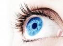 Цилиарное тело (ресничное тело): строение и функции. Схема глаз