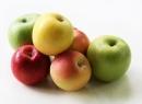 Сколько в день можно съедать яблок? Свежие яблоки: польза и вред для здоровья