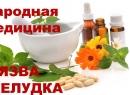 Лечение язвы желудка народными методами