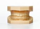 Молочные зубы – первые зубы у младенцев, ребенка - детская стоматология, молочные зубы, прорезывание