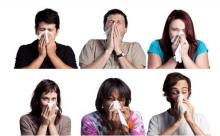 Как заставить себя чихнуть? Советы специалистов и народные способы