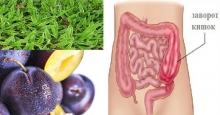 Народные методы лечения кишечной непроходимости или заворота кишок