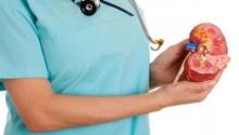 Анехогенне новообразования в почке: причины, симптомы и особенности лечения