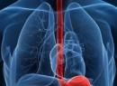Дискинезия пищевода - Лечение народными методами